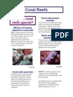 Coral Reef Booklet