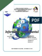 Informe de Informatica Instrumental
