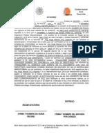 Formatos de Notificacion (Guia)