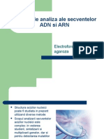 Metode de Analiza Ale Secventelor ADN Si ARN