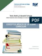 Conceptos Básicos de la Teoría Curricular