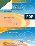 numeralia_envejecimiento_2012