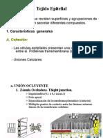 2da Clase Tejido Epitelial I y II (Dra Salinas)