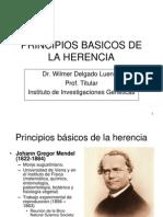 1 Principios Basicos de La Herencia
