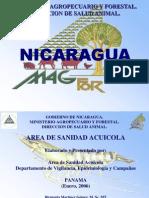 Presentacion Nicaragua2