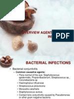 Overview Agent Penyebab Infeksi Mata