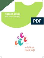 Raport anual 2012-2013