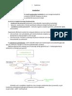 Anabolism Ciclul Krebs
