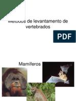 Metodos de Levantamento de Vetebrados