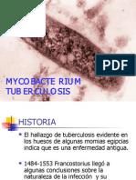 mycobacterium t