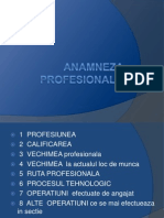 ANAMNEZA  PROFESIONALA