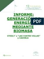 3369_informe biomasa