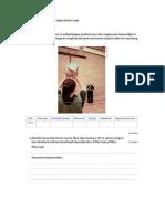 Lesson 13 Exam Practice 2013-14