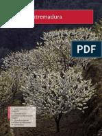Datos Geograficos de Extremadura