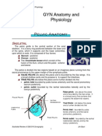 Pelvic Anatomy