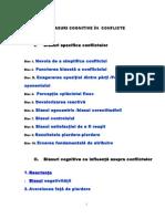 Biasurile Cognitive in Conflicte 2013