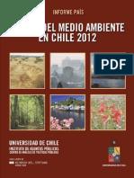 Informe Pais 2013 Web