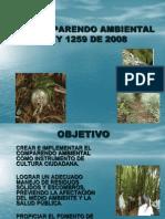 Comparendo Ambiental (1)