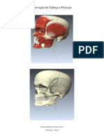 Inervação de cabeça e pescoço