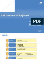SAP Overview for Beginners 1.0