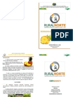 Rn-ea 05 - Tecnologia Do Abacaxi e Derivados - Apostila 02
