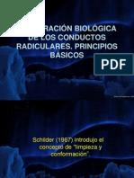 principiospbm-090806222047-phpapp02