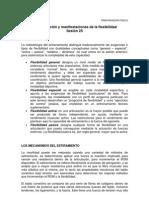 32_Estructuraciones y Manifestaciones de La Flexibilidad