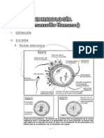 13. Embriologia.pdf