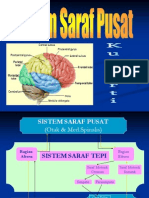 Sistem Saraf Pusat Faal