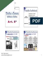 20-10-2010 - Remédios Constitucionais