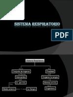 Sistema Respiratorio - Paolo Arrunátegui y Huatay CArrillo5 A
