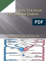 Pengukuran Tekanan CO2  dalam Darah.pdf