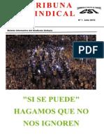 Tribuna-Julio-2012.pdf