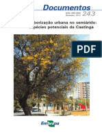 Arborizacao Urbana Caatinga