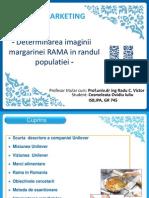 Marketing Unilever Rama 2003