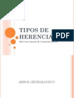 Tipos de Herencia 2011