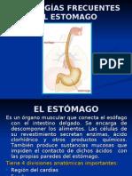 Patologias_Estomago_claudia