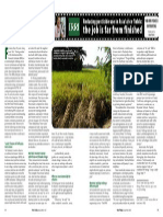 Rice Today Vol. 13, No. 1 Reducing pesticide use in Asia's rice fields