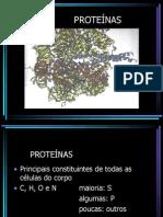 Estrutura proteínas e ácidos nucléicos