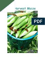 Self-Propelled Corn Harvester