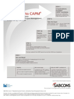 Sabcons Capm Roadmap