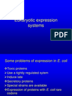 Eukaryotic Expression Systems