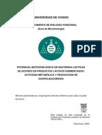 Potencial Biotecnologico de Bacterias Lacticas