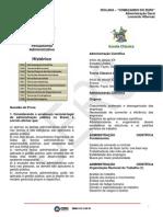 Aula 01 - Isolada Começando do Zero - Administração Geral - Evolução do Pensamento Administrativo - Leonardo Albernaz