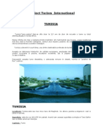 Proiect Tunisia