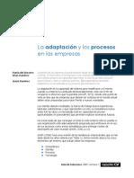 La adaptación y los procesos en las empresas