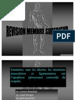 39094464 Revision Membre Sup t5