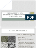 B-Lactámicos, Aminoglucósidos y Glucopéptidos laura