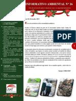 Boletín Informativo N° 16
