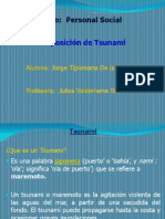 Tsunami Expos 22.08.12